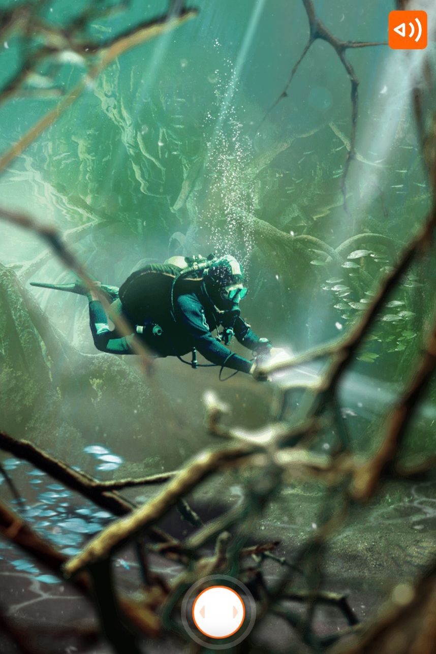 ING-what would you choose scenario where you see a diver underwater among a reef