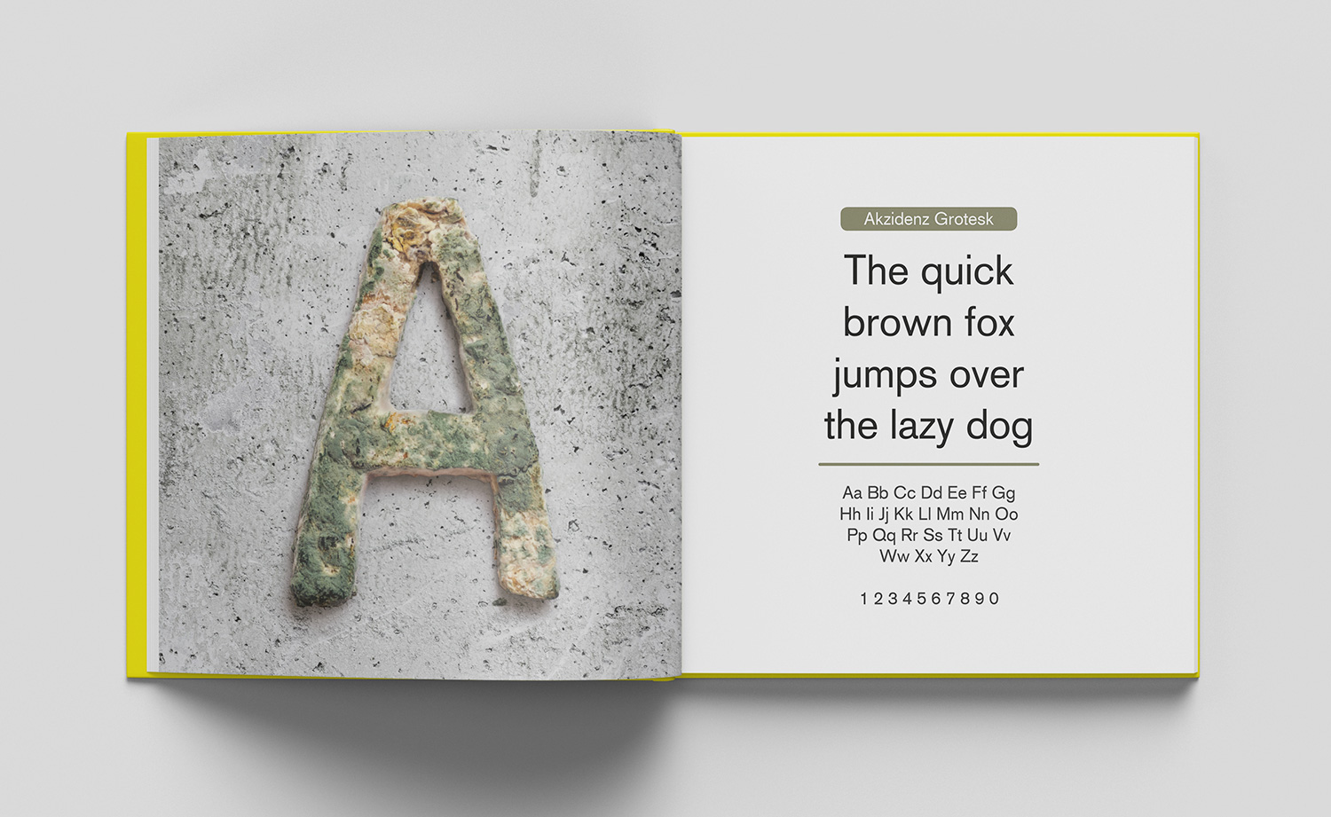 ABC of typography book spread letter A made from rotten bread on a concrete surface