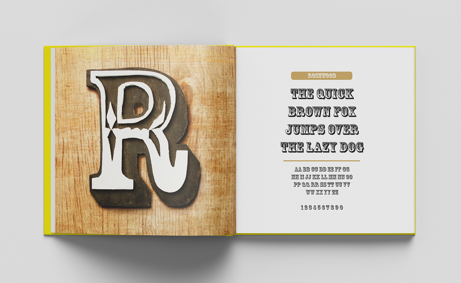 ABC of typography book spread letter R made from painted wood